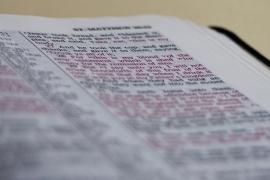 prevajanje-besedil