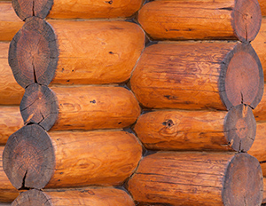 odkup-lesa